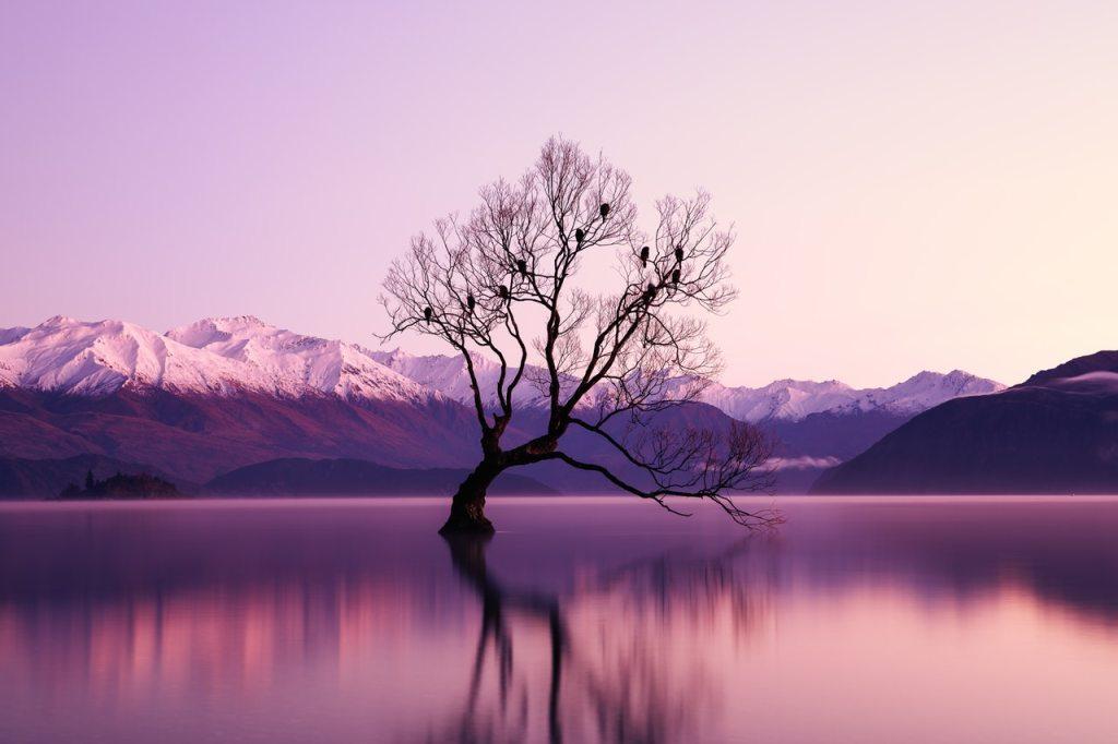 gorgeous landscape atozmomm.com