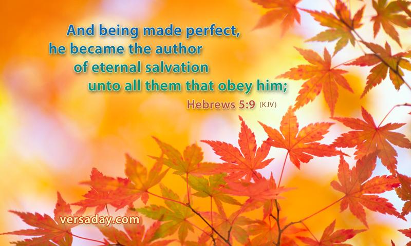 Hebrews 5:9 atozmomm.com bsf