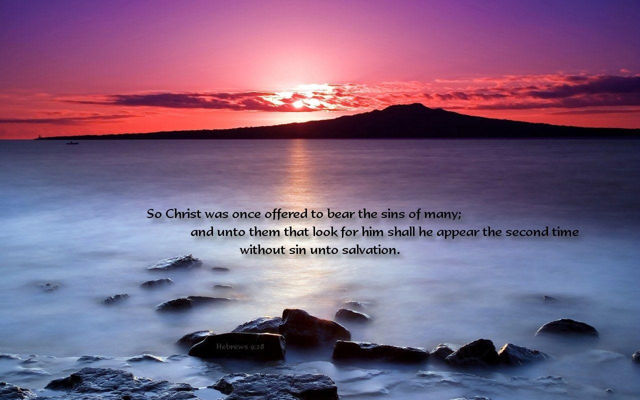 hebrews 9:28 atozmomm.com
