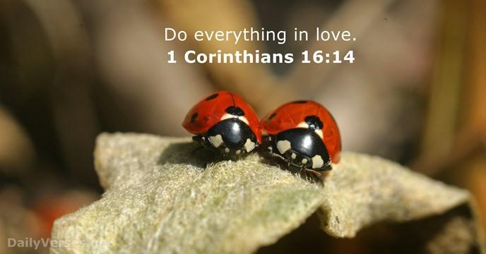 1 Corinthians 16:14 atozmomm.com