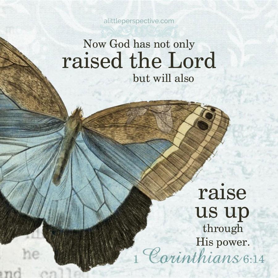 1 Corinthians 6:14 atozmomm.com