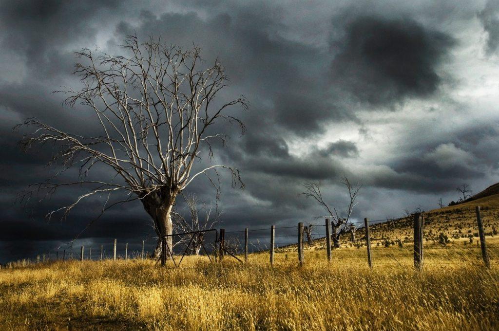 life's storms atozmomm.com