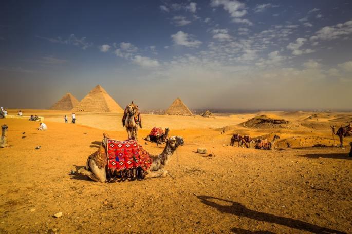 abram in egypt www.atozmomm.com