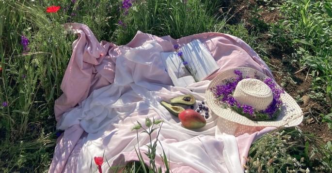 www.atozmomm.com summer bible study online bsf wordgo study of hebrews summer picnic